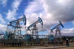 Впервые за три месяца нефть торговой марки WTI упала ниже 40 долларов за баррель