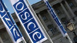 ПА ОБСЕ поддержала идею РФ о создании контактной группы по Украине