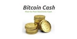 Новый bitcoin cash моментально вошел в ТОП-3 криптовалют по капитализации