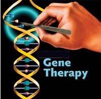 Как генная терапия в будущем может вылечить СПИД?
