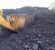 В Узбекистане расширят сеть по продаже угля