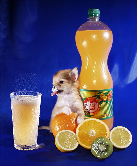 ...с чрезмерным употреблением газированных напитков и фруктовых соков.