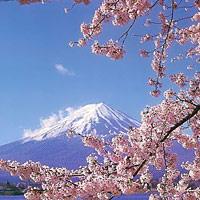 В Японии презентованы культура и традиции Кыргызстана