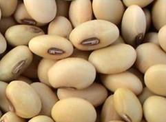 Текущая ситуация рынка соевых бобов