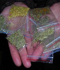 МВД проверяет учебные заведения на распространение наркотиков