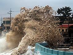 Каковы последствия стихии, обрушевшейся на Японию?
