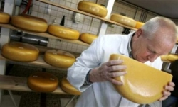 Роспотребнадзор выдвинул новые претензии к украинским сырам