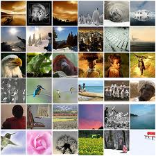 Google «хоронит» Picasa Web Albums