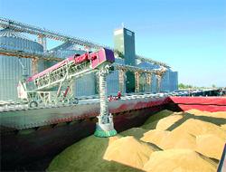 На каких условиях зернотрейдер получит от ЕБРР кредит для расширения деятельности в Украине?