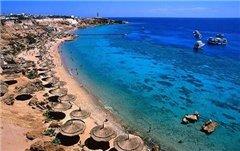 В Египте собираются отпугивать акул электромагнитным излучением
