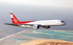 Самолет в Стамбул пытался угнать душевнобольной?