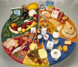 20 ведущих брендов диетического питания у россиян в Интернете