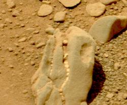 Curiosity обнаружил на Марсе череп динозавра