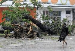 Тайфун Хайян принес много бед