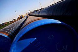 Заводы в Польше и Болгарии со следующего года откажутся от российского газа
