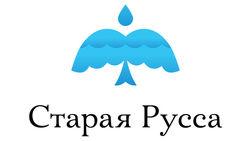 За логотип Старой Руссы Артемий Лебедев хочет больше 50 тысяч долларов