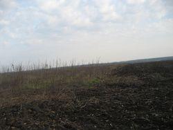 Артобстрелы уничтожают уникальную почву Украины – экологи