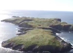 В Ирландии выставили на торги большой остров: цена не кусается