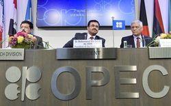 Страны ОПЕК договорились снизить уровень добычи нефти