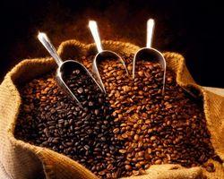 Рынок кофе: цены готовятся к росту - трейдеры