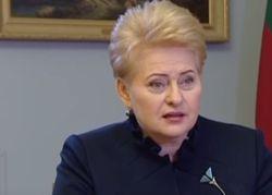 ЕС отменит визы для Украины в 2016 или 2017 году – президент Литвы