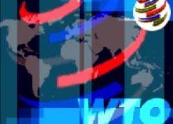Участники ВТО подписали историческое соглашение - подробности