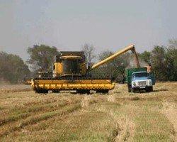Китай присматривается к 3 млн. гектаров черноземов Украины