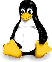 IBM инвестирует в развитие Linux миллиард долларов США