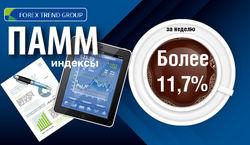 11,7 процента - такова прибыль индексов ПАММ ForexTrend