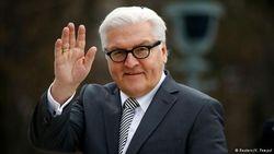 Штайнмайер с надеждой ждет переговоров по Сирии