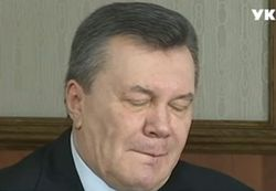 У экс-президента Украины Януковича в России родился сын