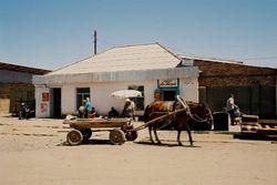 Фермеры Кыргызстана  озабочены – куда экспортировать урожай