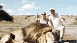 В Африке браконьеры погибли из-за селфи с застреленным львом