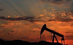 Утечка информации в Саудовской Аравии подняла цены на нефть выше 46 долларов