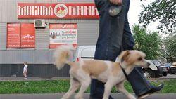 В Мособлбанке украли 70 млрд. рублей