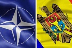 В Молдове тает поддержка гражданами вступления в НАТО