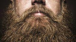 Борода защищает от микробов – ученые