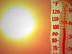 Аргентина изнемогает от жары и терпит убытки