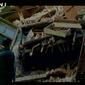 В Индии произошло мощное землетрясение – есть погибшие