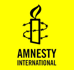 Amnesty International: гибель митингующих в Украине на совести силовиков
