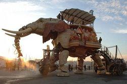 Во Франции открылся зоопарк чувствительных роботов