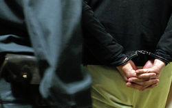 Милиция задержала двух вооруженных огнестрелами членов самообороны Майдана