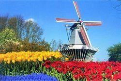 """Кризис довел: Нидерланды будут """"торговать"""" видами на жительство"""