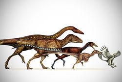 Совсем по Дарвину: В ходе эволюции выжили динозавры маленьких размеров