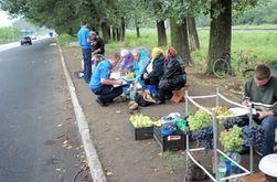 В Украине поднимут штрафы в торговле - причины и последствия