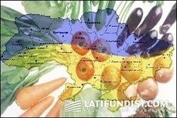 Правительство Украины обещает, что резкого подорожания продуктов не будет