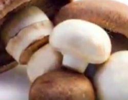 Ученые определили молодильные грибы