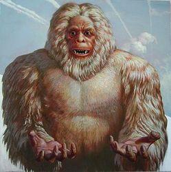Йети появился в результате скрещивания белого и бурого медведей – версия