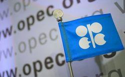 Переговоры Москвы с ОПЕК пополнили бюджет РФ на 6 млрд. долларов – Bloomberg