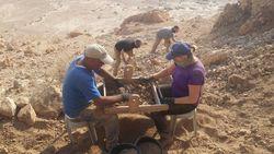 Археологи обнаружили пещеру, в которой хранились рукописи Мертвого моря